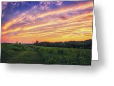 Retzer Nature Center - Summer Sunset #4  Greeting Card
