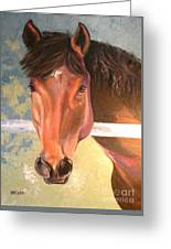 Reverie - Quarter Horse Greeting Card