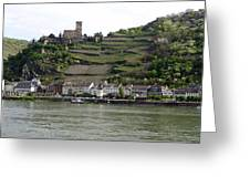 Rhine Castle And Terraced Vineyards Greeting Card