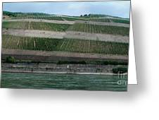 Rhine Valley Vineyards Panorama Greeting Card
