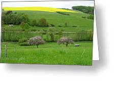 Rhineland-palatinate Summer Meadow With Cherry Trees Greeting Card
