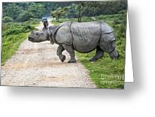 Rhino Crossing Greeting Card