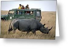 Rhino Inn Tanzania Greeting Card