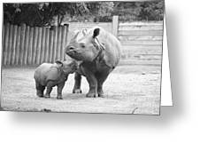 Rhino Mom And Baby Greeting Card