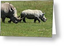 Rhino Mother And Calf - Kenya Greeting Card