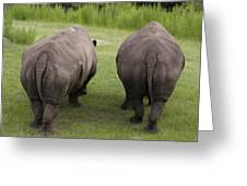 Rhino Rears Greeting Card