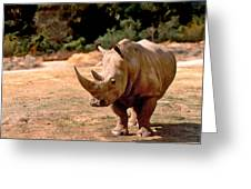 Rhino Greeting Card by Steve Karol