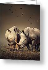 Rhino's With Birds Greeting Card