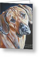 Rhodesain Ridgeback Greeting Card
