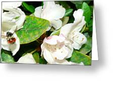Rhododendron And Bee Greeting Card