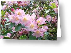 Rhododendron Flowers Garden Art Prints Floral Baslee Troutman Greeting Card