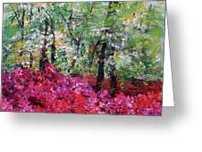 Rhododendron Glade Norfolk Botanical Garden 201821 Greeting Card
