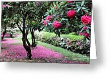 Rhododendrons Blooming Villa Carlotta Italy Greeting Card