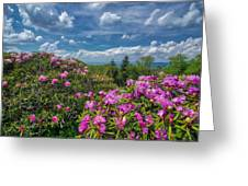 Rhododendrons Greeting Card