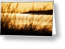 Rhos Point Viewed Through Beach Grass Greeting Card