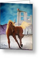 Rhyolite Pony Greeting Card