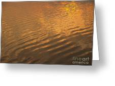 Rhythmic Sea At Hunting Island Greeting Card