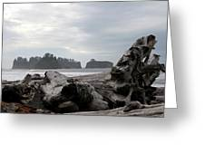 Rialto Beach Greeting Card