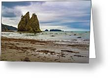 Rialto Beach Greeting Card