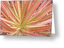 Ribbon Palm Greeting Card