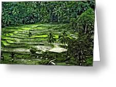 Rice Paddies Greeting Card