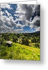 Rice Terrace Greeting Card