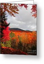 Rich Fall New Hampshire Colors Greeting Card