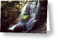 Ricketts Glen Falls 029 Greeting Card