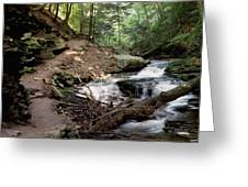 Ricketts Glen Falls 030 Greeting Card
