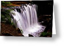 Rickett's Glen State Park Greeting Card