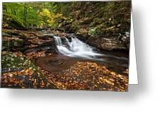 Ricketts Glen State Park Pennsylvania Autumn Waterfall Scenic Greeting Card