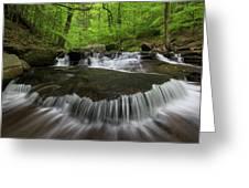 Ricketts Glen State Park Pennsylvania Greeting Card