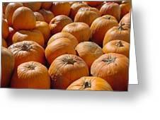 Rick's Pumpkins Greeting Card