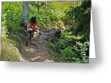 Ride Through The Woods #51 Greeting Card