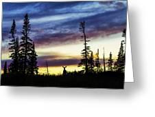 Ridge Sihouette Greeting Card