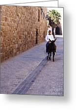 Riding A Donkey Greeting Card