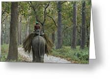 Riding An Elephant Greeting Card