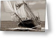 Riding The Wind -sepia Greeting Card