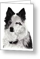 Riggs Greeting Card