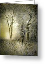 Rimy Forest Windy Daybreak By Laszlo Mednyanszky 1896 Greeting Card