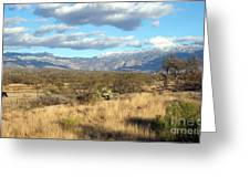 Rincon Valley Winter Greeting Card