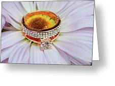 rings on white daisy love Valentine's Day  gerbera and wedding gold  Greeting Card