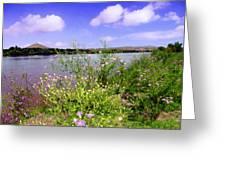 Rio Grande De Las Cruces Greeting Card