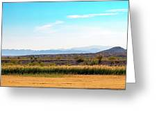 Rio Grande Flood Plain Greeting Card