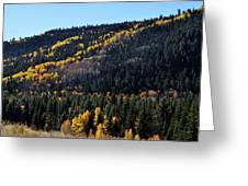 Rio Grande National Forest Greeting Card