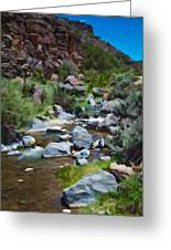 Rio Hondo Arroyo  Greeting Card