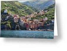 Riomaggiore 0577 Greeting Card