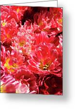 Riot In Pink Greeting Card