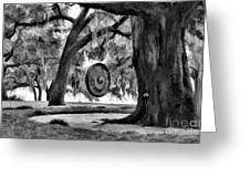 Rip Van Winkle Gardens Louisiana Bw Greeting Card