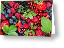 Ripe Of  Fresh Berries Greeting Card